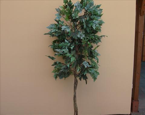 Strom - dekorace