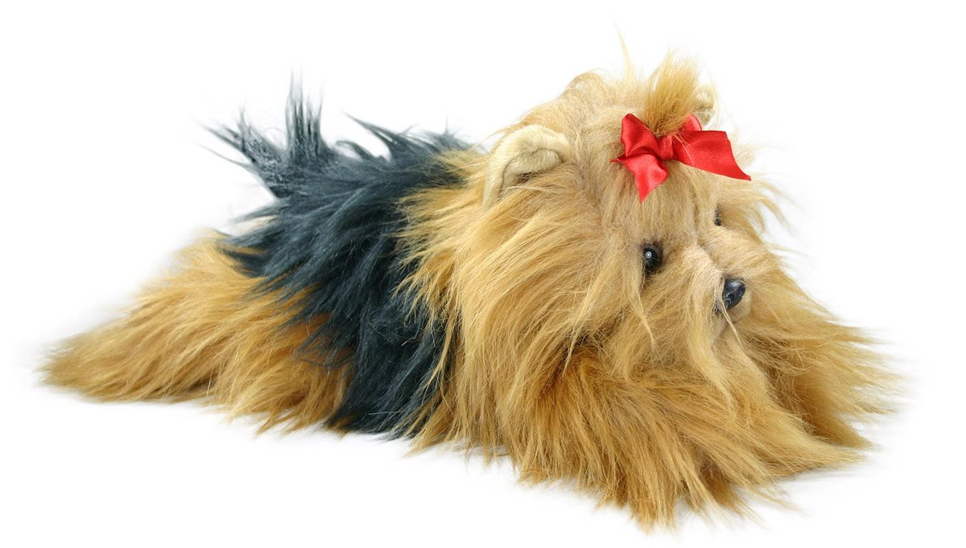 plyšový pes jorkšír ležící, 30 cm