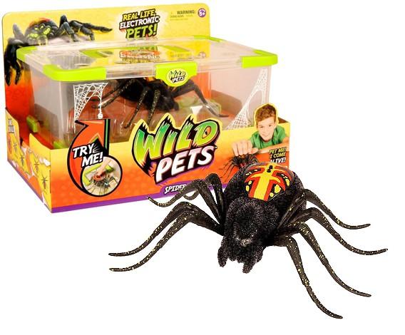 Video WILD PETS Pavoučí terárium + pavouk