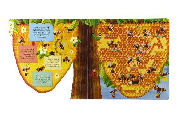 Knížka Co se děje ve včelím úlu 23x23x2cm 3+